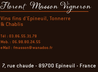 Florent Masson Vigneron